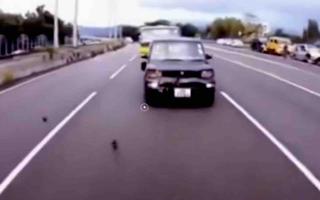Video: bijzondere meneer veroorzaakt meerdere crashes